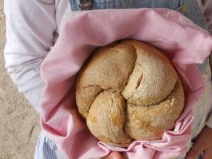 paine poiana florilor